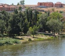 Miradores al Duero